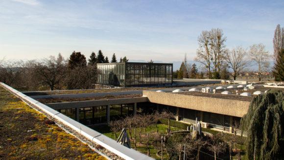 398 / Lullier - Rénovation et végétalisation des toitures